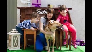 Краснодог/приехали в приют бездомных животных/ помощь животным и фото с ними