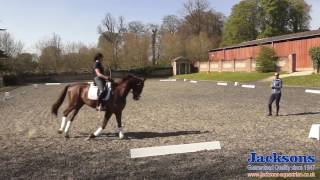 How To Give And Retake Of The Reins