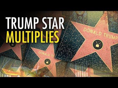 Martina Markota: Activists lay new Trump Hollywood stars