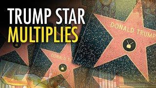 Martina Markota of TheRebel.media: The activists put the new stars ...