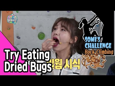 [ENG SUB_SOMI Live] Somi Trying Dried Bugs 20170304