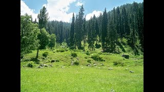 From Utror Top To Kumrat Valley On APV. Unbelievable travelling | Tourism Pakistan.