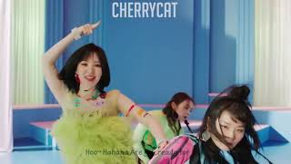 Things You didn't notice in Red Velvet's Zimzalabim MV (Giveaway)