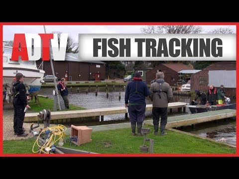 The Northern Broads Fish Tracking Project - Environment Agency - Part 2