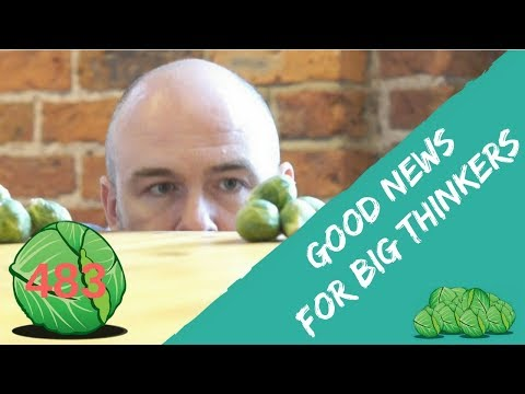 The Good News for Big Thinkers | daily sprout 483