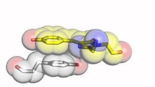 YFP (Yellow Fluorescent Protein)  chromophore