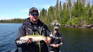 Putting a New Spin on Brook Trout