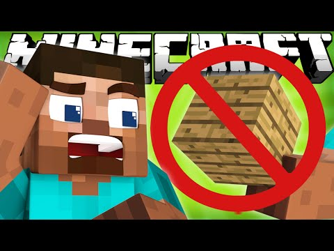 Thumbnail: If You Couldn't Build in Minecraft