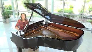 Lyrical piano ballad: Mark Maarder - Elegy