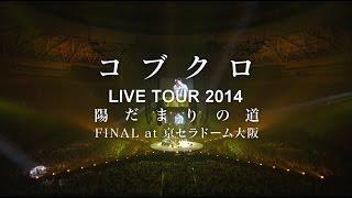 コブクロ - KOBUKURO LIVE TOUR 2014 陽だまりの道 FINAL at 京セラドーム大阪 SPOT映像 thumbnail