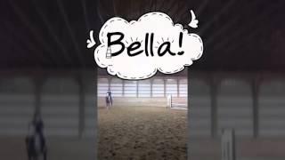 Watch Me (Bella) Whip/ Nae Nae