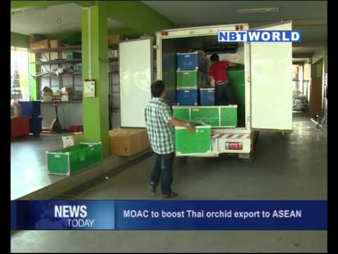 MOAC to Boost Thai Orchid Export to ASEAN