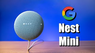 Setting Up the Google Nest Mini, New Features & World Wide Duo Calls