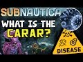 What is the Carar Disease? (EXPLAINED) (OUTDATED!) NEW VIDEO UP ON CHANNEL