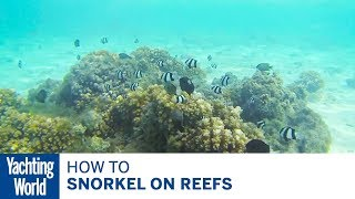 How to snorkel on reefs - Yachting World Bluewater Sailing Series | Yachting World