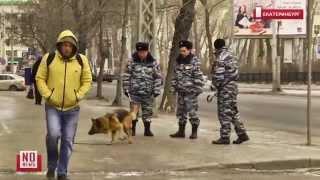 В центре города работают кинологи(Специальная группа полиции, в состав которой входят кинологи и обученные распознавать взрывчатку собаки,..., 2015-11-25T07:20:06.000Z)
