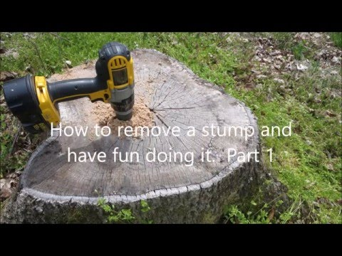 easy-way-to-remove-tree-stumps---part-1