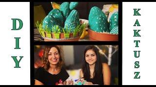 DIY Kaktusz Kavicsokból || Csorba Anitával