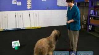 How To Train Your Dog For A Rally-o Show : Left Finish During A Rally-o Competition