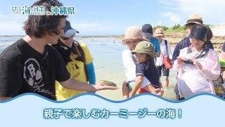 海DO宝~カーミージーの海で遊び隊~ 日本財団 海と日本PROJECT in 沖縄県 2018 #08