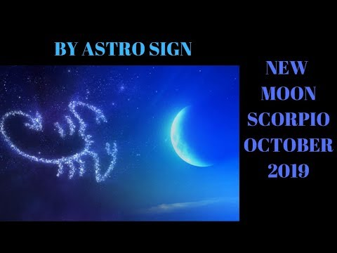 new-moon-by-each-sign-reading-october-23-30-love-oracle