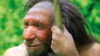 STUDY: Humans & Neanderthals