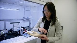 Zhenan Bao, chimiste de la peau électronique