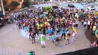 [MIRROR] Flash Mob Dance LMFAO Party Rock Anthem mp4