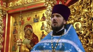 видео 4 декабря 2015 года - Введение во храм Пресвятой Богородицы