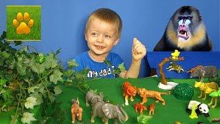 Путешествие в Джунгли с Lion Boy Животные Джунглей для Детей  Детям про животных Видео для Детей