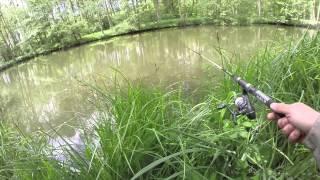 Pêche de gros Black Bass aux leurres