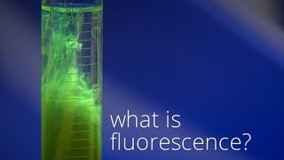 What is Fluorescence?