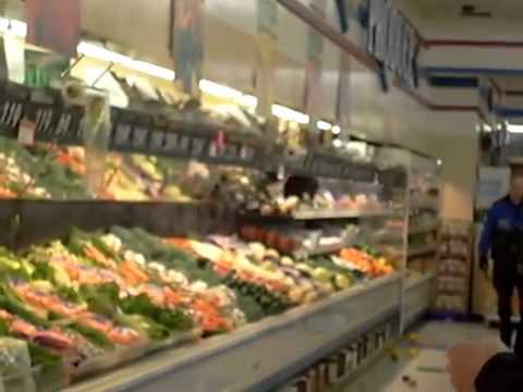 Ours dans les fruits et légumes d'un supermarché