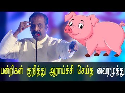 பன்றிகள் குறித்து ஆராய்ச்சி செய்த வைரமுத்து  - Jetlee Audio Launch Latest Tamil Cinema News