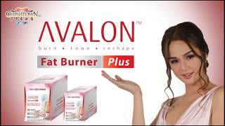 Avalon Product Grand Launch