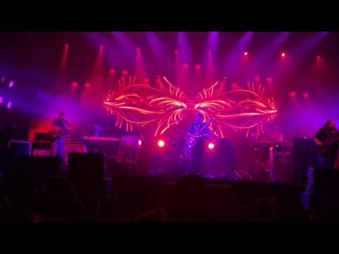 Widespread Panic Honkey Red