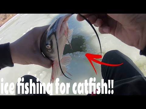 How To Catch Catfish Ice Fishing: Utah Ice Fishing 2017
