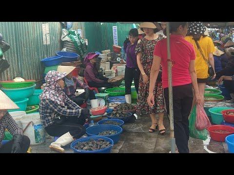 Du Lịch Hạ Long: Chợ Hải Sản Ngon Nhất Quảng Ninh
