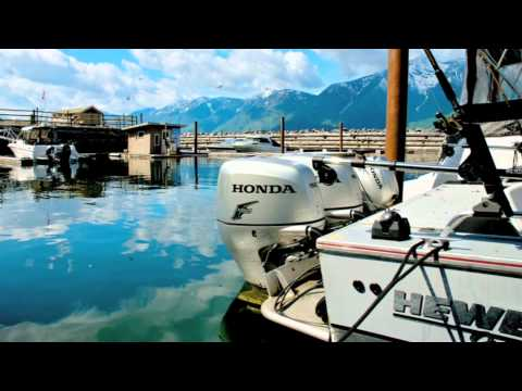 Mountain Shores Resort and Marina Lake Front Property For Sale