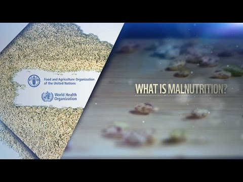 WHO-FAO - International Conference on Nutrition: Malnutrition