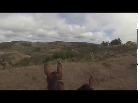 Raw footage of a trail ride I took one afternoon - tandem...@McFarm - September 2014 ©