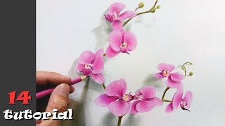 Как нарисовать цветы карандашом ПОЭТАПНО. Учимся рисовать цветными карандашами!
