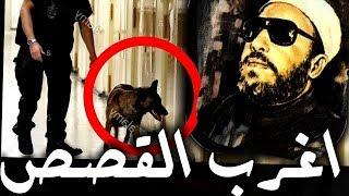 اغرب 4 قصص تسمعها من الشيخ كشك - قصص اغرب من الخيال