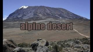 TOP 10 FACTS YOU DIDNT KNOW ABOUT MOUNT KILIMANJARO