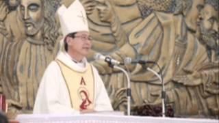 Bài giảng Lễ Đức Mẹ Vô nhiễm Nguyên tội 8 - 12