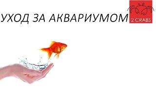Уход за аквариумом.