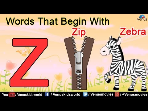 Words That Begin With 'Z'