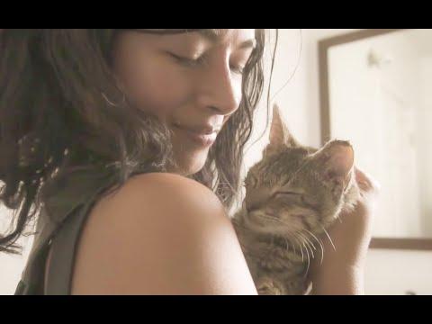 Street Cat Rescue - Kitten Season in Brooklyn