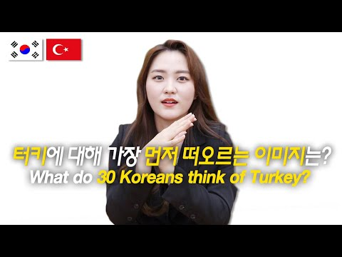 What 30 Koreans Think of Turkey? / Hoontamin