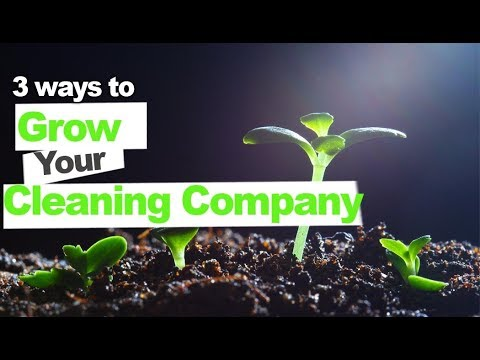 3 Ways to Grow Your Cleaning Company